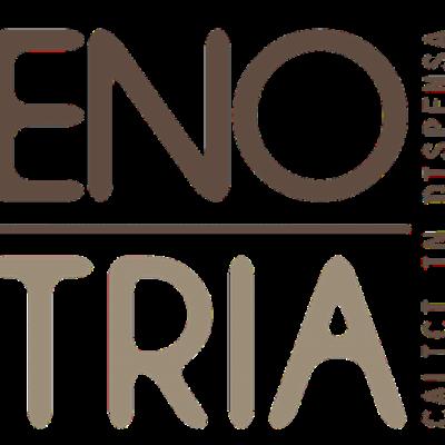 logo enotria marrone_web