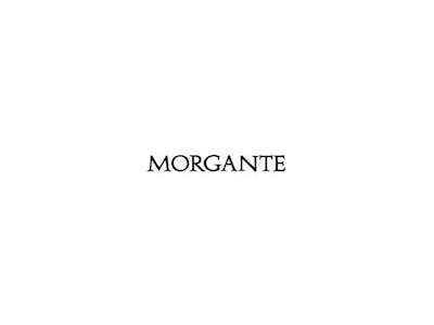 morgante copy